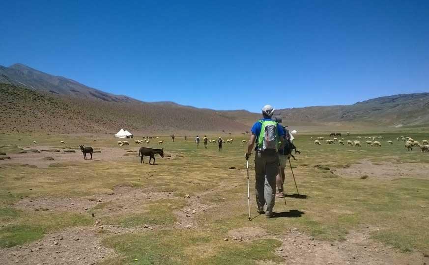 2-peaks-trekking-in-morocco
