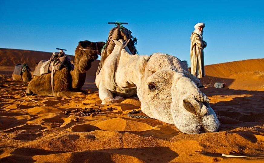 Morocco Sahara Tour, Merzouga Dunes Expedition - 3 D