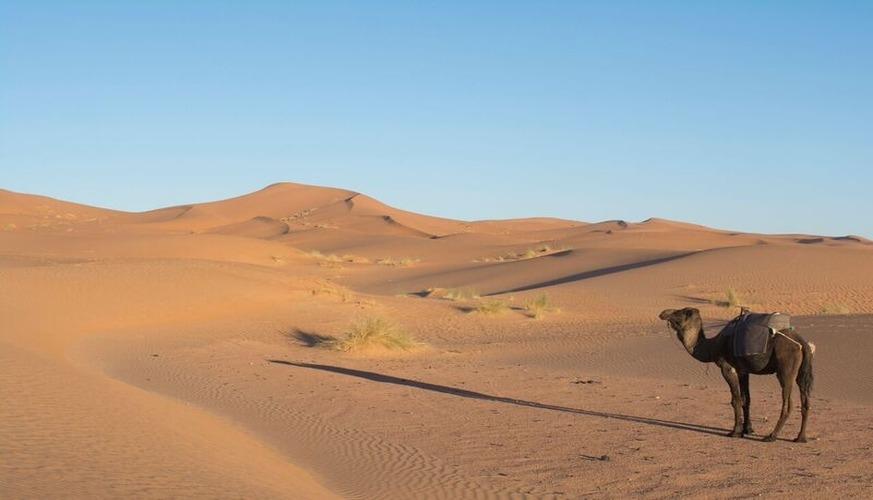 toubkal and Sahara Desert Tour 6 Days - Mt Toubkal