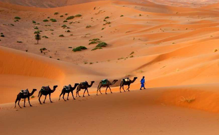 sahara-desert-tours-in-morocco-holidays