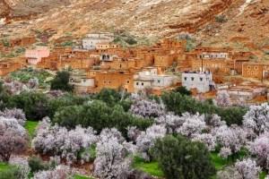 Morocco's Rose Festival