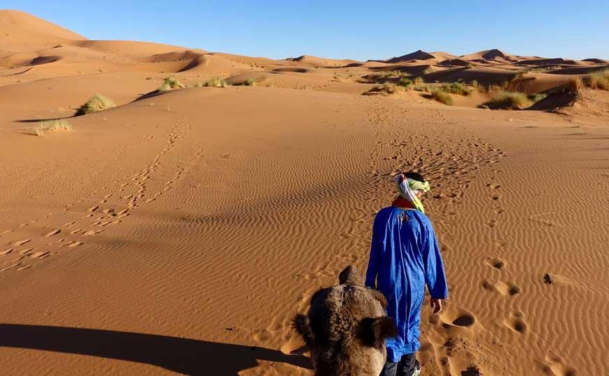 camel-trek-sahara-desert-morocco