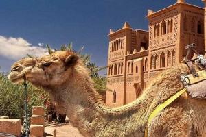 toubkal-and-sahara-desert-tour